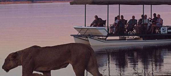 The Ultimate Botswana & Zambia Safari – by Brett Thomson