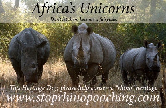 Save a Rhino This Heritage Day on Sep 24th