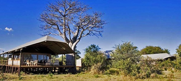 Classic Botswana & Victoria Falls Summer Safari – 8 nights – US$4180