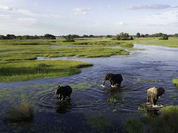 Southern Africa Safaris that delight – Client Feedback
