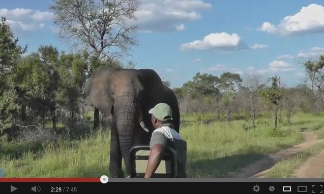 Video Review of Umkumbe Safari Lodge