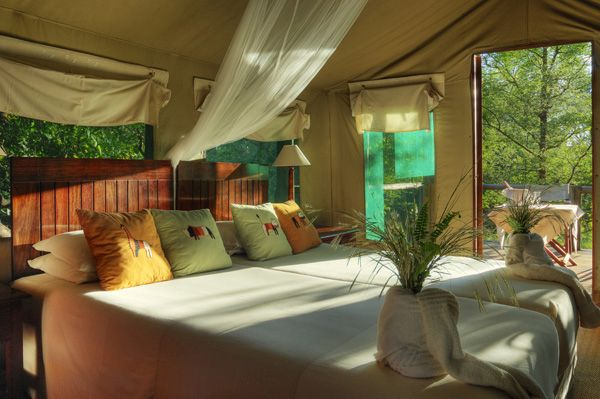 camp moremi, Camp Moremi Guest Review – by Anne-Marie Mulder
