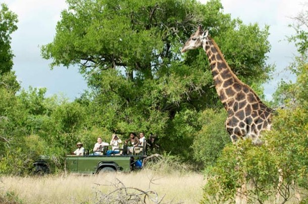 Cape Town to Kruger Holiday – Client Feedback by Liselle Raath