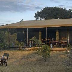 Safari special to Kenya's Amboseli & Masai Mara