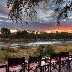 Client Feedback : Stunning Simbavati River Lodge !