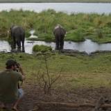 Fancy a Photographic Safari?