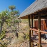 Camp Shonga was superb! – Client Feedack