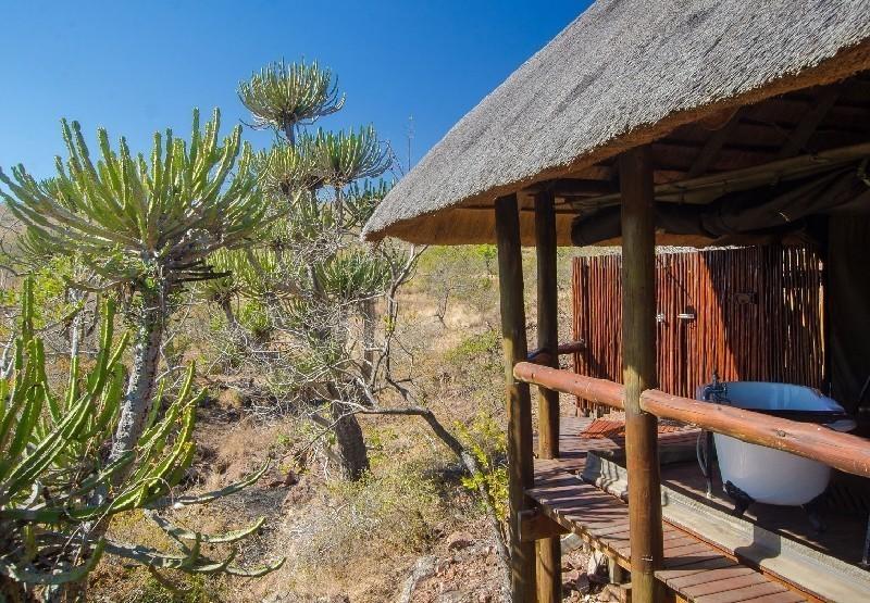 camp shonga1kruger sunsafaris