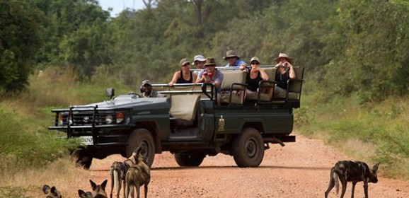 A Typical day on safari