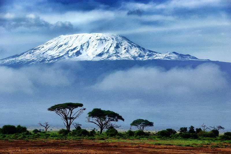 Kilimanjaro Africa  - Iconic Images of Africa