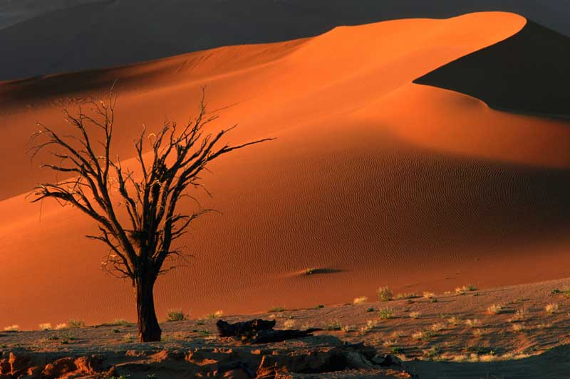 Sossusvlei Red Dunes  - Iconic Images of Africa