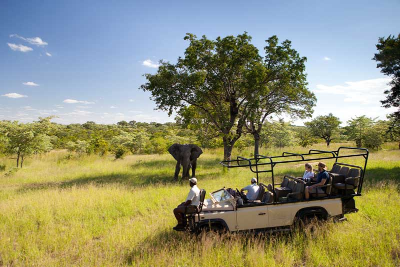 Ulusaba Game Drives