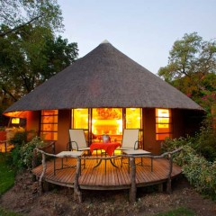 Mala Mala Top Choice for Educational Family Safari