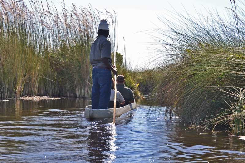 Mekoro Trips Okavango Delta