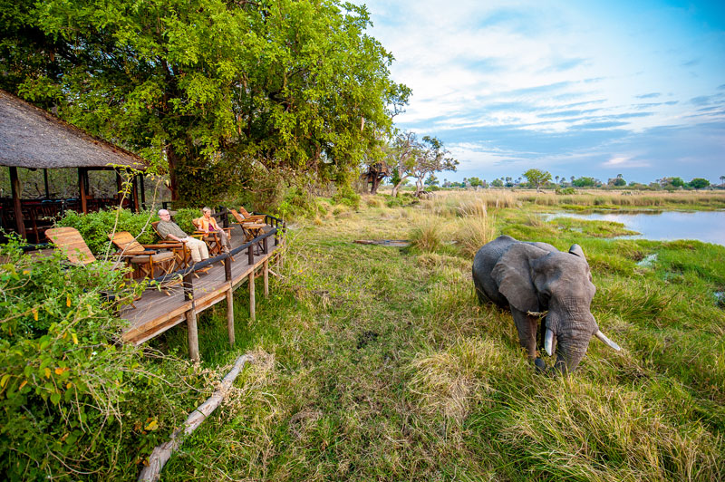 Delta Camp Elephant