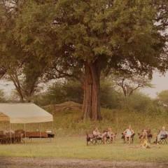Botswana's Letaka Mobile Safaris : As Seen on TV