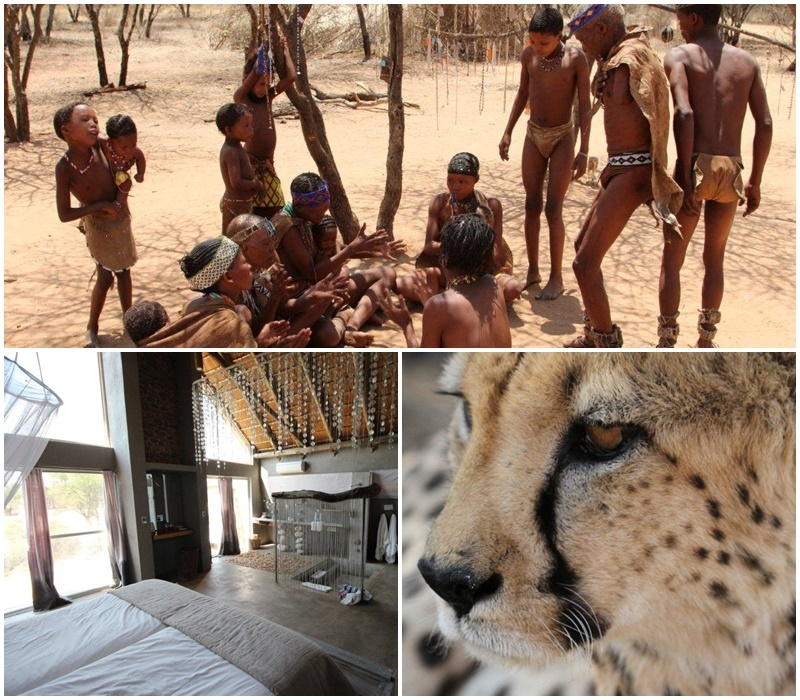 A bushman interaction and cheetah research project at Na'anKuse