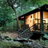 Top 4 Safari Lodges in Sub-Tropical KwaZulu Natal