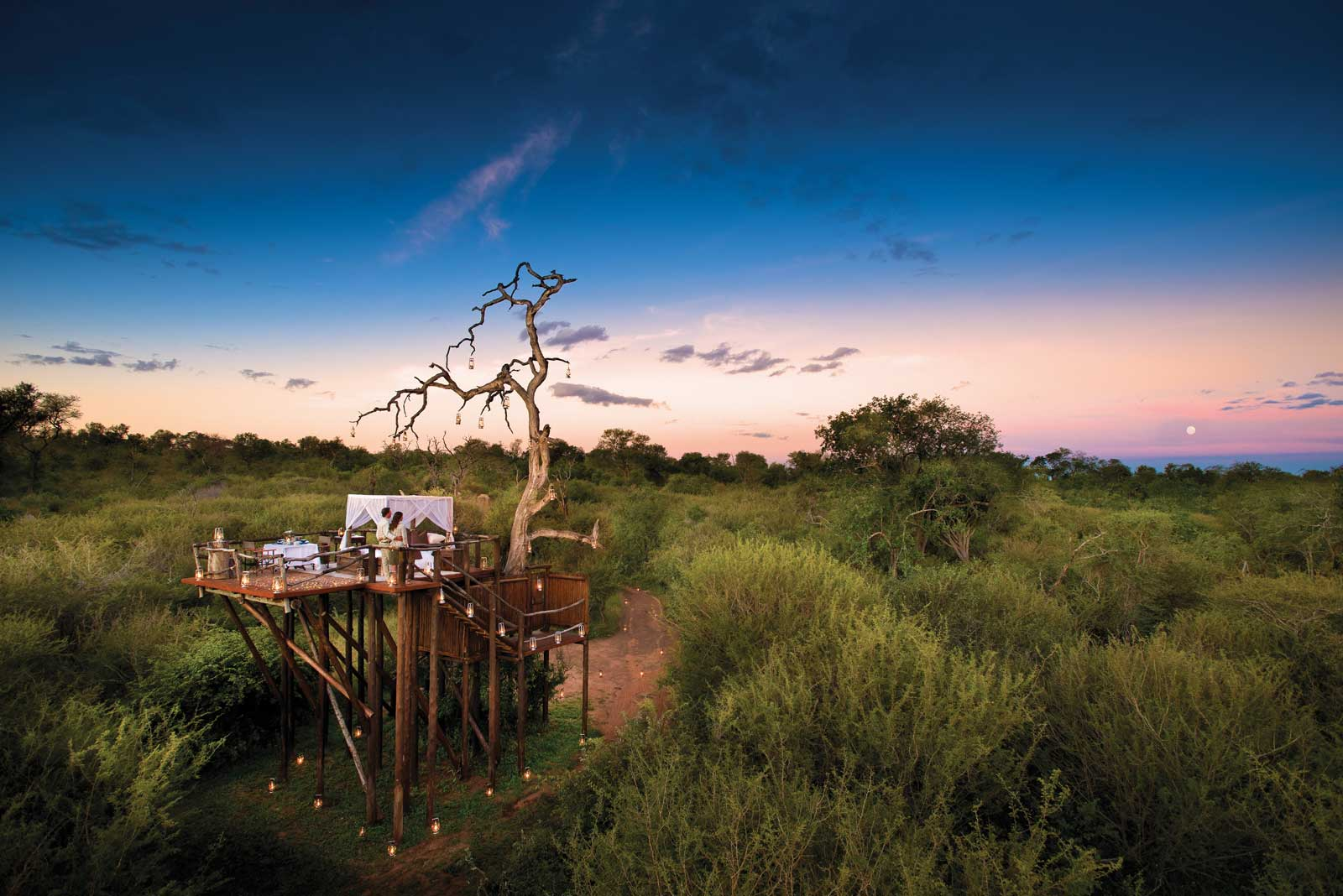 Chalkley Treehouse starved experience, Lion Sands