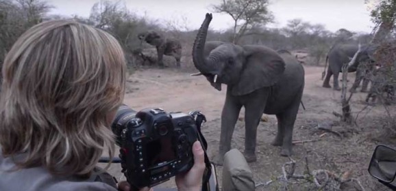 Packing for a Safari : Clothes, Gear and Gadgets