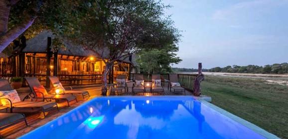 Client Feedback : Natasha Arranges the Perfect Safari