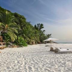 Marine Paradise Restored at Seychelles' North Island