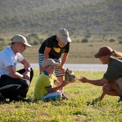 South Africa's Luxury Family Safari: Kwandwe Game Reserve