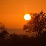 Client Feedback : Coastal Cape Town, Kruger Bushveld and Vic Falls !
