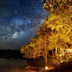 The Safari Stars of South Luangwa