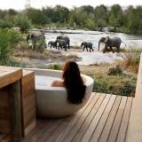 Safari Showers & Bush Bath Tubs to Remember