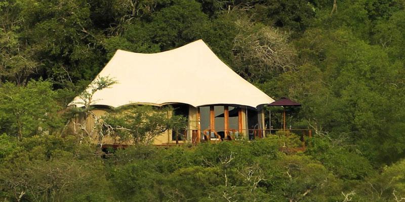 Thanda Tented Camp KwaZulu