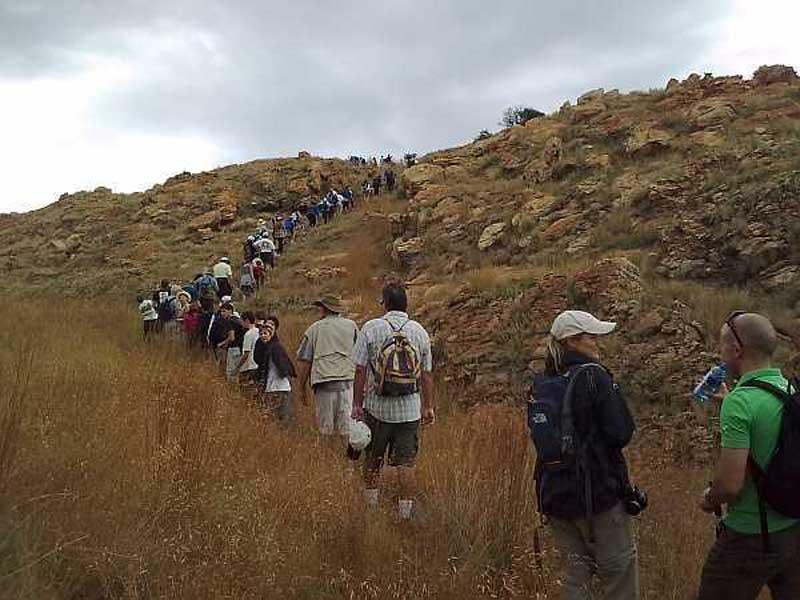 Melville Koppies Johannesburg