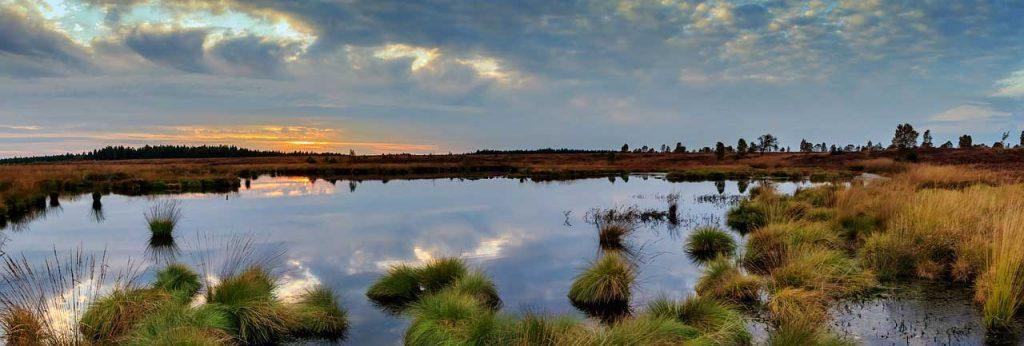 Bangweulu Wetland, Zambia