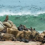 5 Must Visit Places in Namibia