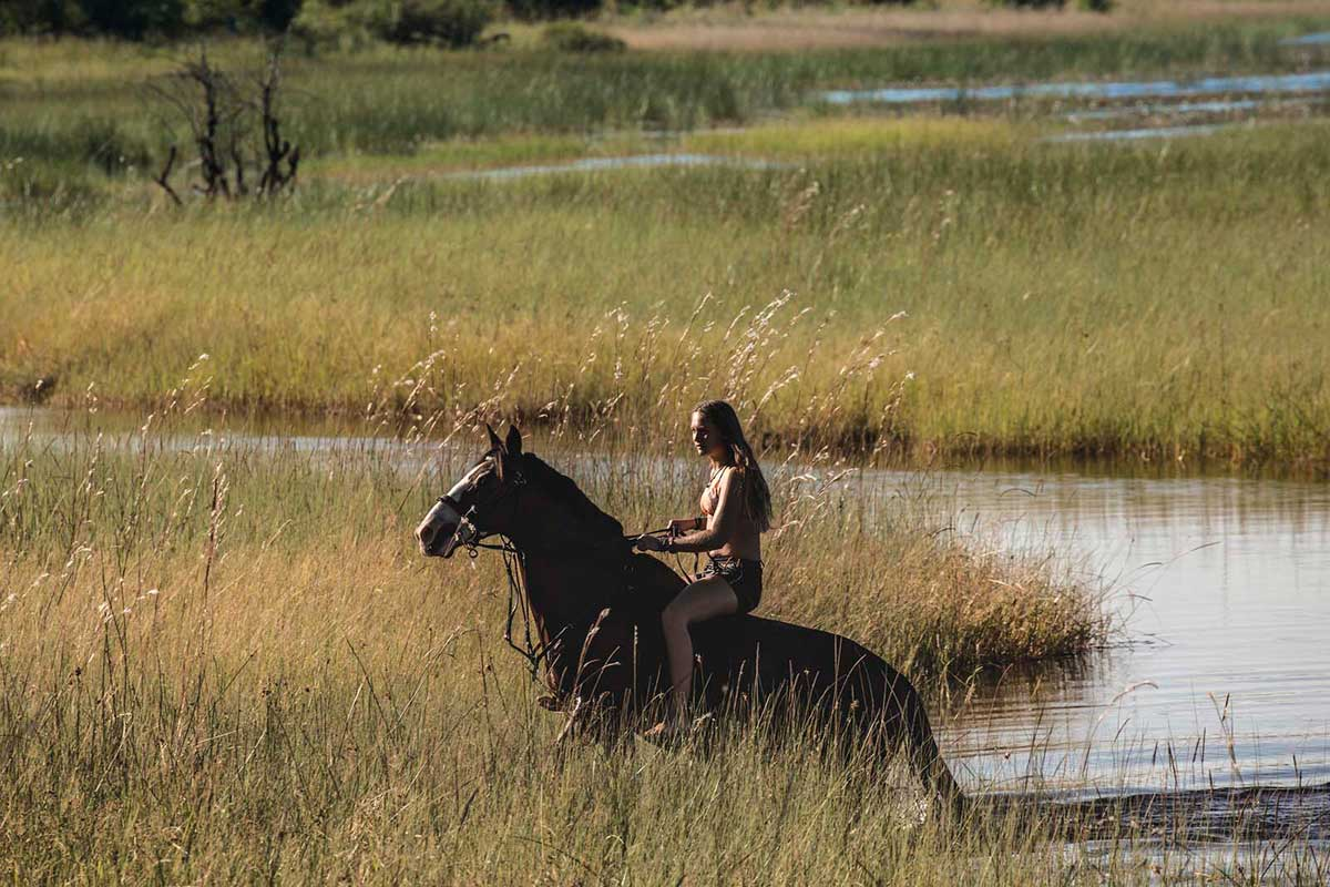 Horse Riding in the Okavango DElta
