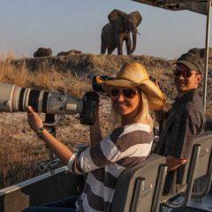 5 Distinct Safari Ideas for Your 2018 Bushveld Holiday