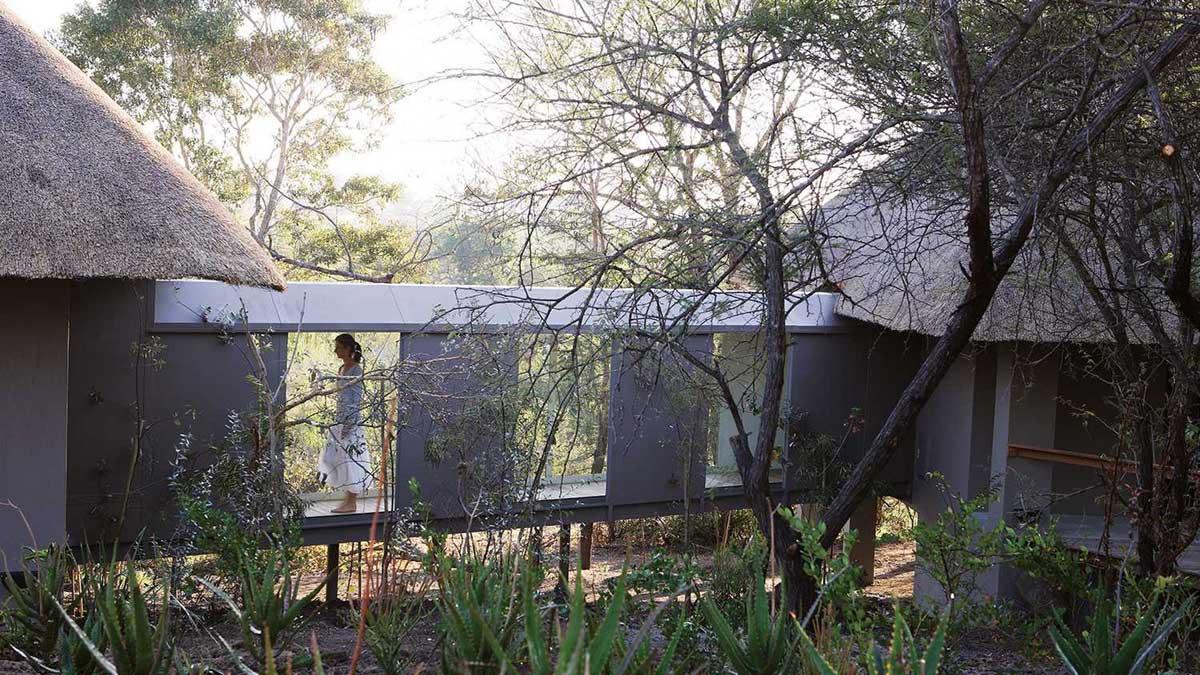 Pioneer Camp Londolozi