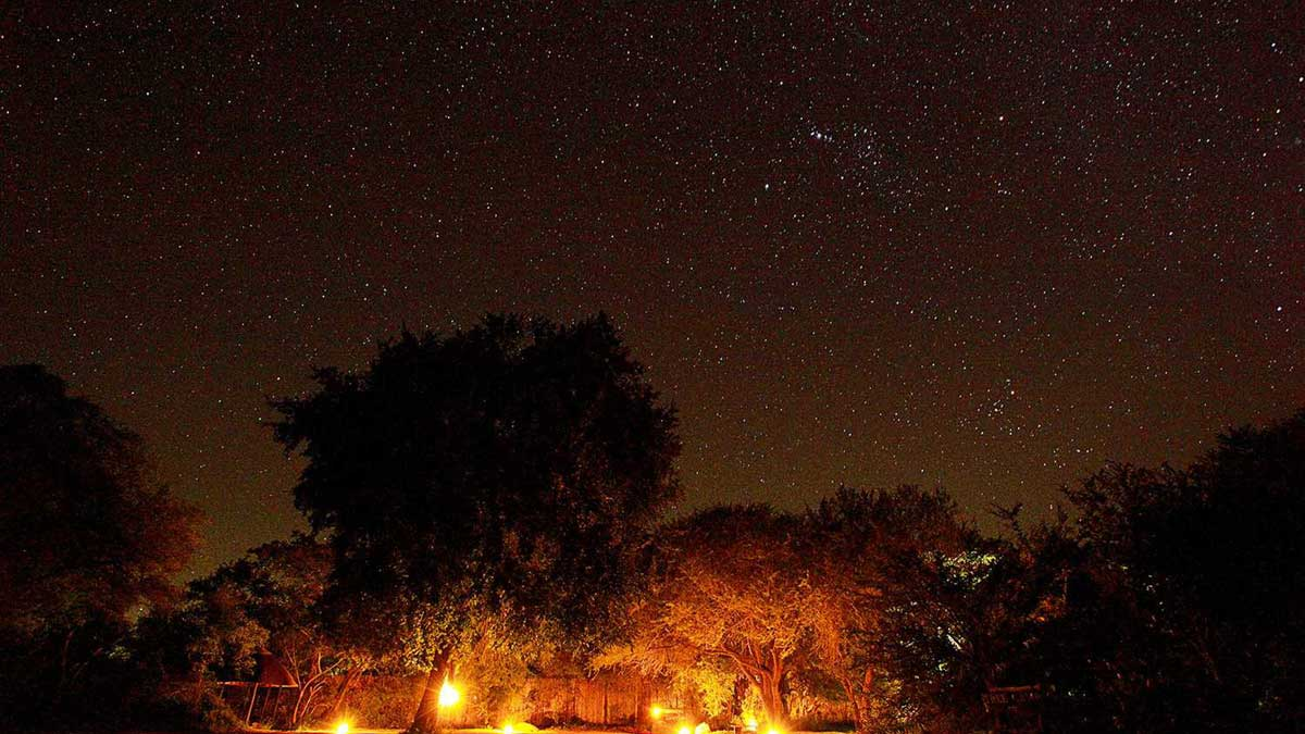 Varty Camp Under Stars