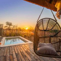 Client Feedback : Ezulwini Game Lodges in the Balule Nature Reserve