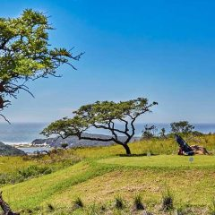 Eastern Cape : Combine Safari, Coast and Golf in Charming Chintsa
