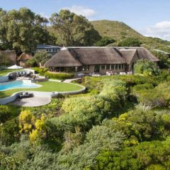 Our Love Affair with 5 Star Grootbos Nature Reserve in the Overberg