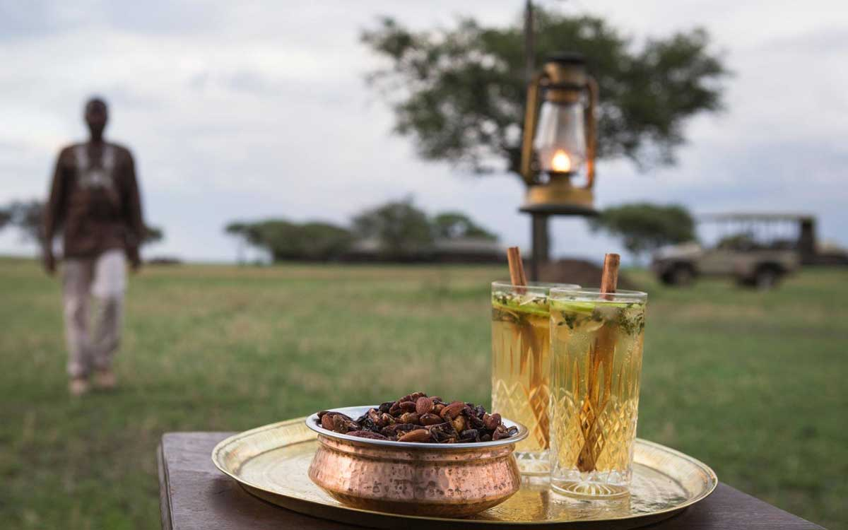 Why is a Safari Holiday Expensive? We Answer 7 Kruger FAQs.
