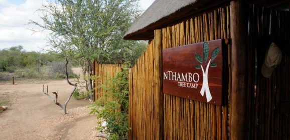 Client Feedback : nThambo Tree Camp for Romance!
