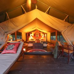 Glamping: Our Favourite Tented Safari Camps in Africa