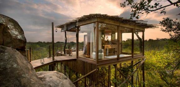 MORE Safari Treehouse Experiences in the Wilderness