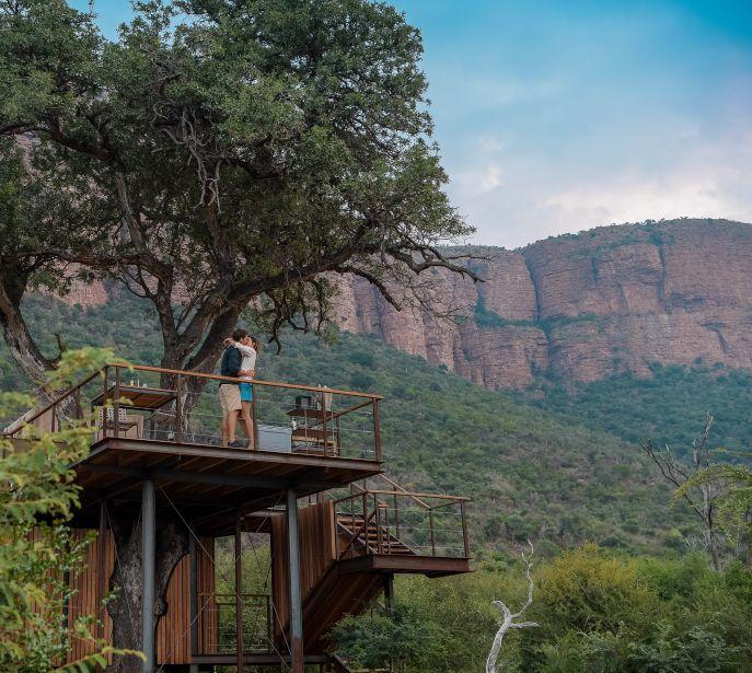 20180206 Marataba Safari Lodge Treehouse photo Ken Butti0133 1 687x615