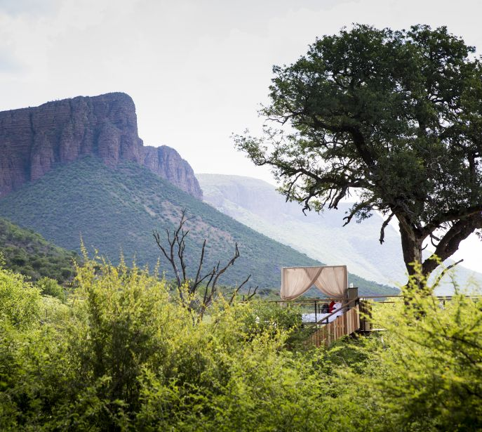 Marataba Thabametsi Treehouse