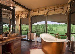 7 Luxurious Outdoor Safari Bathrooms with Wilderness Views