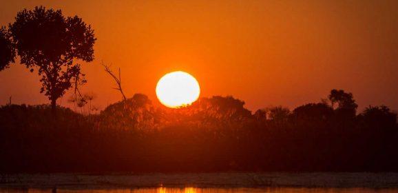 Our Top Okavango Delta Sunset Images from Em Gatland