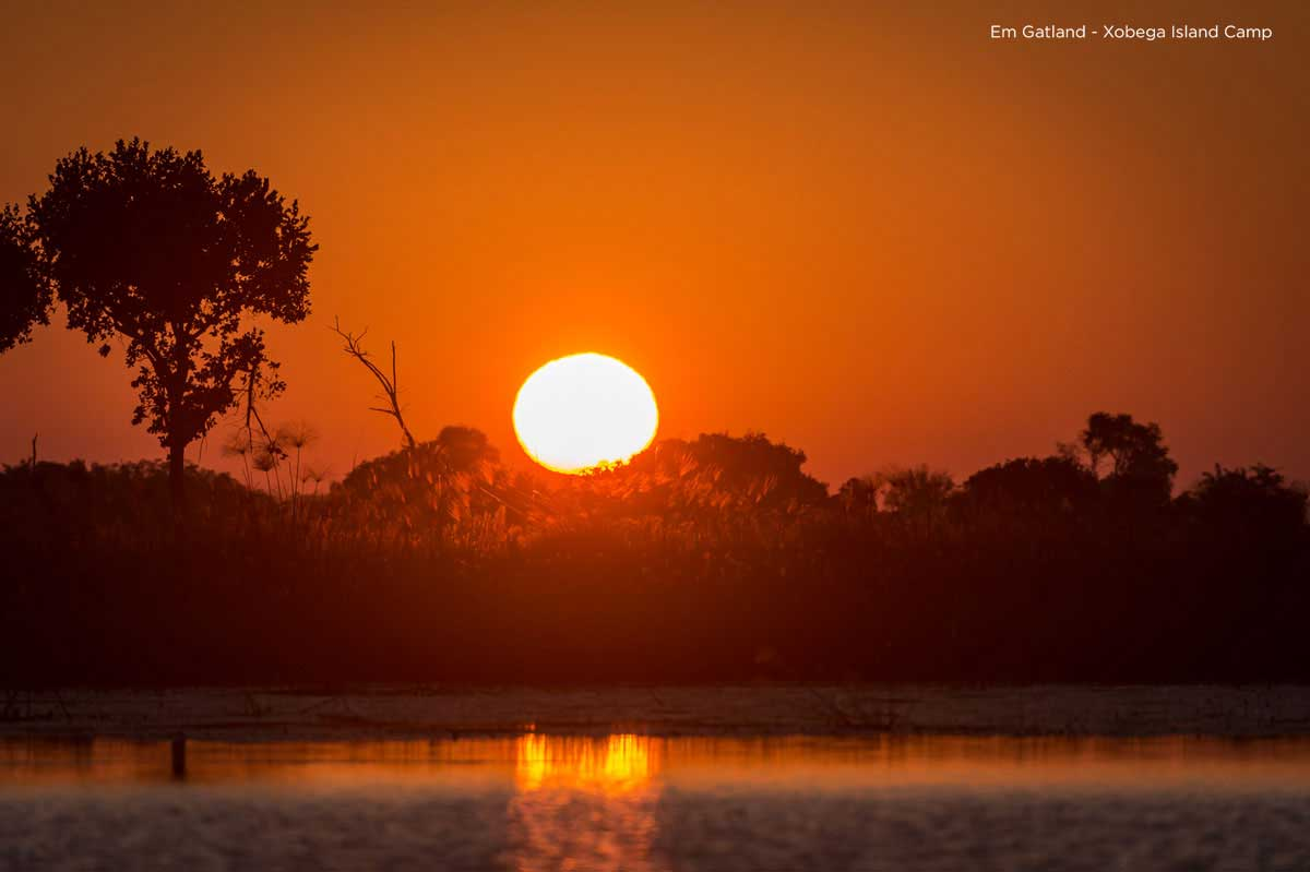 Botswana Sunsets